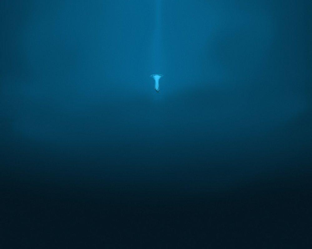 Su korkusu - aquafobia, hidrofobi. Nasıl başa çıkılır 96